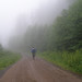 Mountain biking Tiger Mountain by JPChamberland