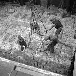 Dockers unloading sisal at the Corporation Quay, Sunderland