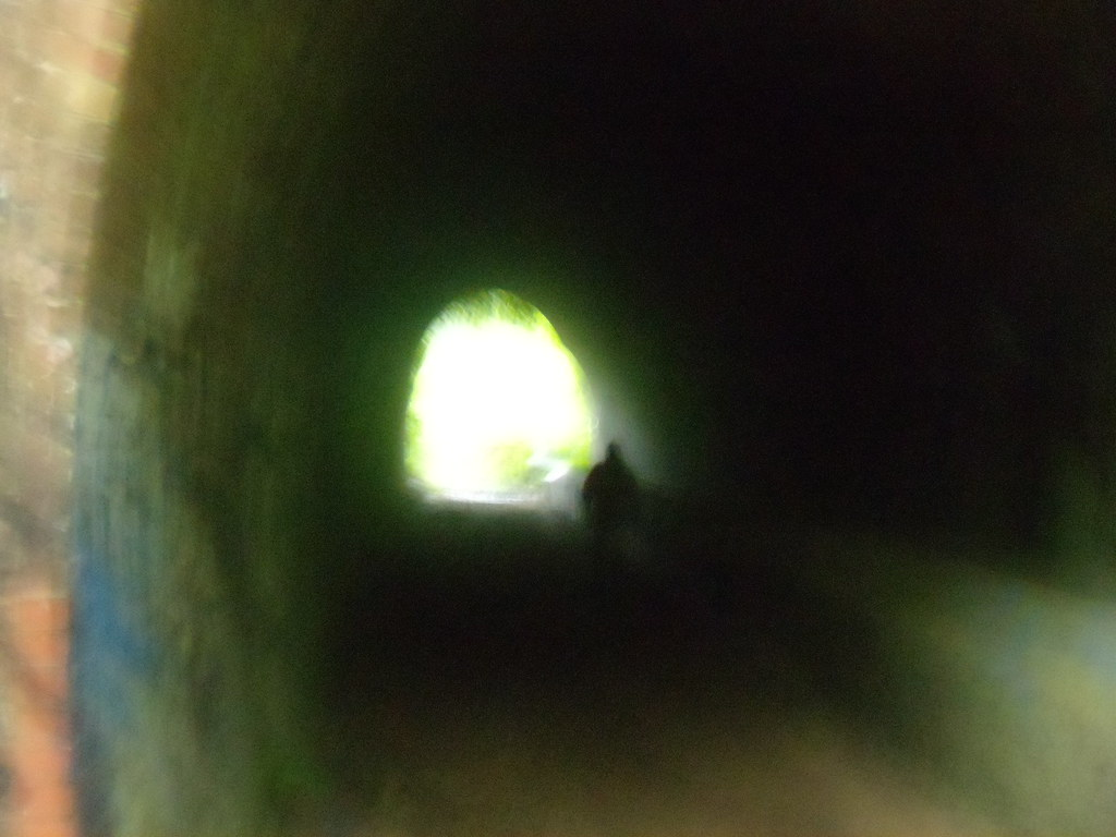 Through a tunnel Crowhurst to Battle