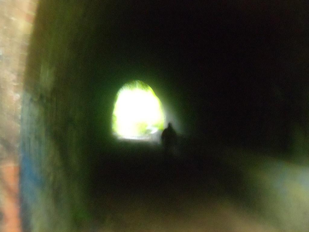 Through a tunnel Crowhurst to Battle