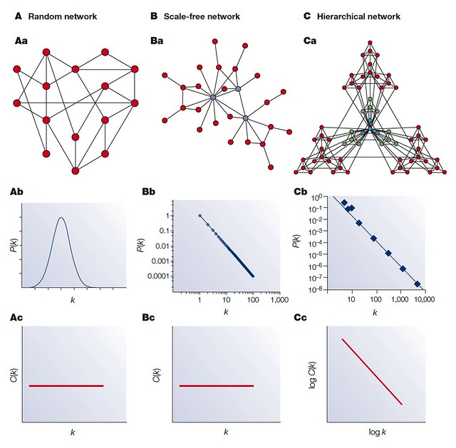 Network Models - Random network, Scale-free network, Hierarchical network