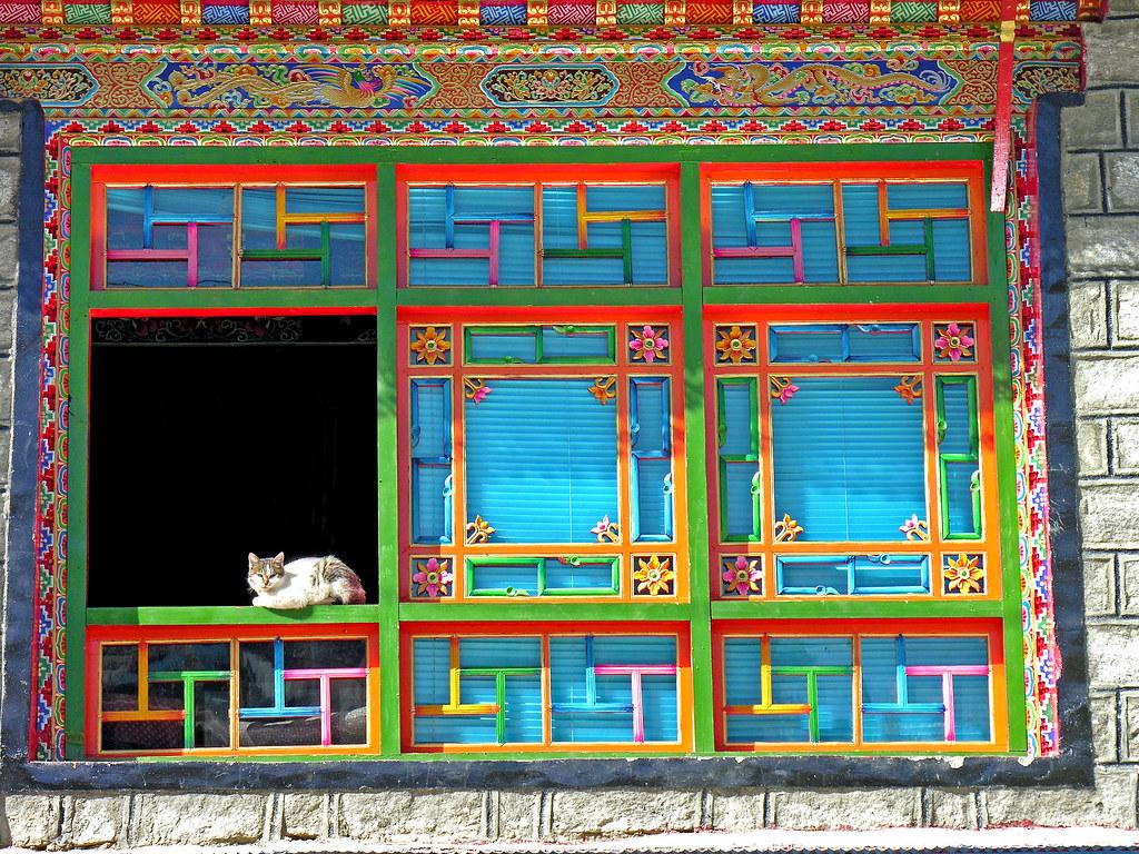 Tibet-6007