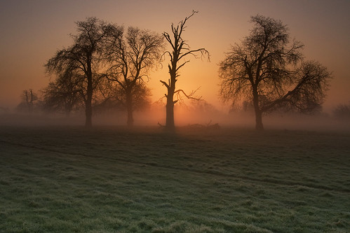 sunrise dawn frost buckinghamshire slough berkshire kevday langleypark langleycountrypark