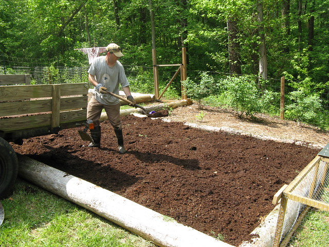 New Garden Bed Spreading The Composted Horse Manure