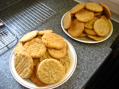 meal(0.0), breakfast(0.0), produce(0.0), dish(0.0), junk food(1.0), peanut butter cookie(1.0), baking(1.0), baked goods(1.0), cookies and crackers(1.0), snickerdoodle(1.0), food(1.0), dessert(1.0), cookie(1.0), snack food(1.0),