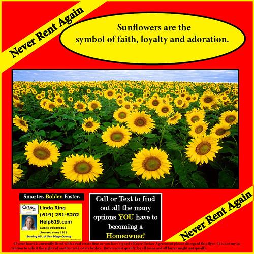 sunflower-house-linda-ring-realtor-century-21-award-san-diego