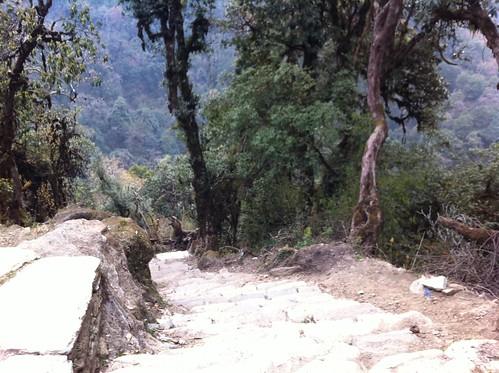 nepal 146