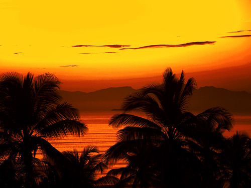 travel sunset pordosol beach topf25 silhouette landscape bravo venezuela olympus falcon tucacas themoulinrouge blueribbonwinner 25faves atrium09 abigfave artlibre anawesomeshot colorphotoaward aplusphoto goldenphotographer diamondclassphotographer excellentphotographerawards rubenseabra