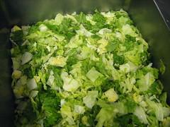 lettuce go swimming