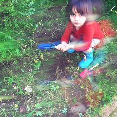 Dia de jardinar :green_heart:
