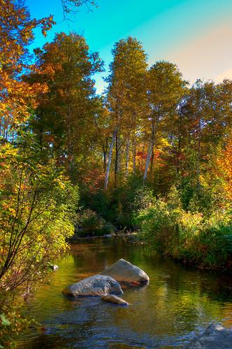 trees usa newyork nature sunrise river adirondacks hdr d300 rockandriver 2528zf