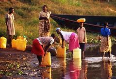 在靠近埃及尼羅河水源附近,尼日烏干達的女人自維多利亞湖取得水源。(Peter Schnurman提供)