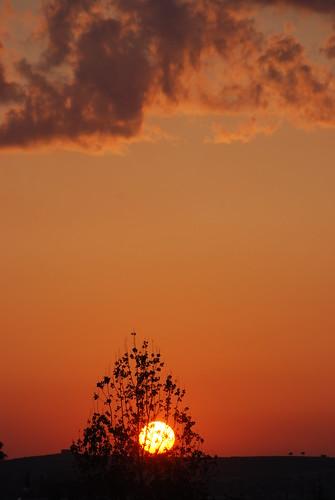 sunset dali ηλιοβασίλεμα idalion ήλιοσ δάλι ιδάλιον