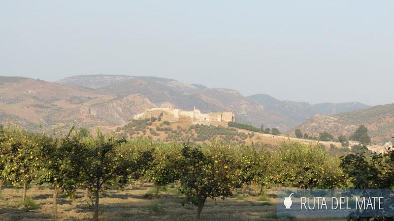 Selçuk Efeso Turquía (27)