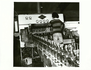 Used bottles being processed for recycling at Edwards Group Industries, Henderson