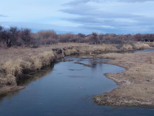 water river utah stream crossing sony hunting deer muledeer spoiler3 mikechristensne