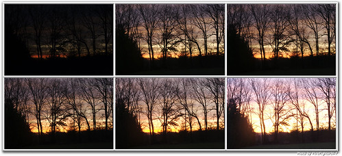 trees sunrise maryland centralmaryland shotbyshotsequence firefighter247