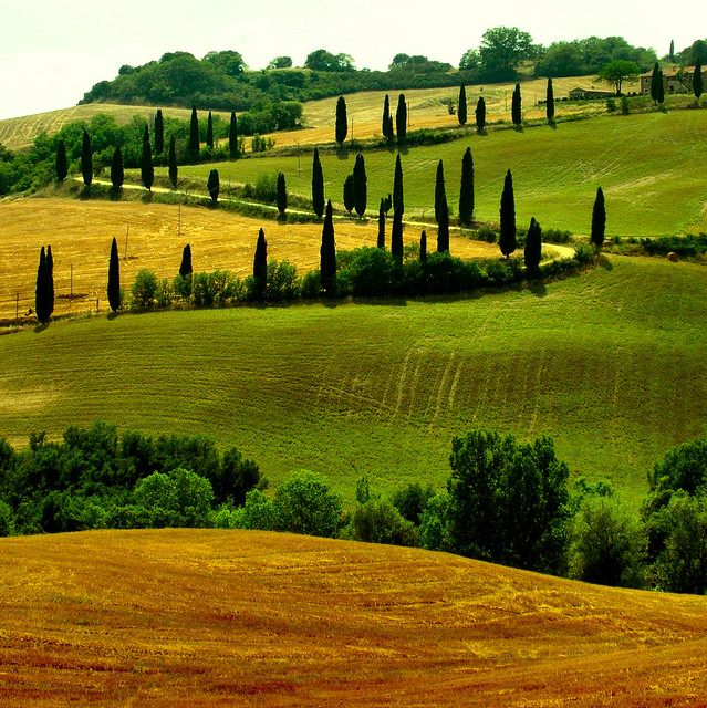 Tuscany paths?
