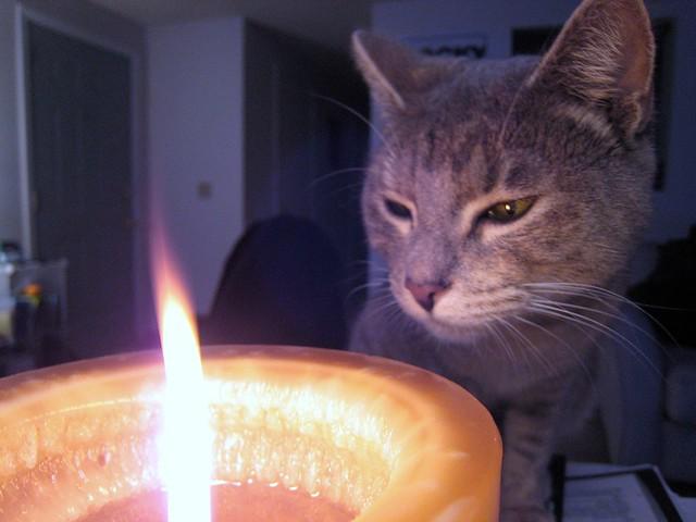 hi candle