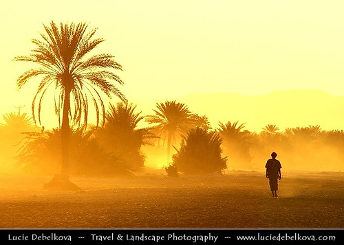 Yemen - Shibam - Walk in Magic Light