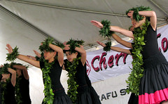 Monterey Park Cherry Blossom Festival - Halau Hula Moani'A'Ala Anuhea