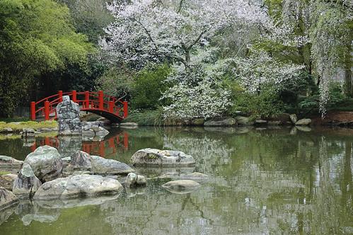bridge lake gardens botanical japanesegarden birmingham rocks alabama tranquility sakura