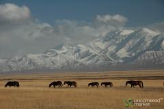 Pamir Mountains, Kyrgyzstan
