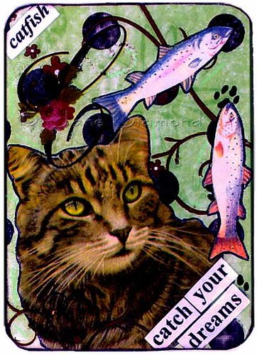 Catch Your Dreams - Cat collage ACEO