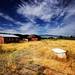 Rural Estate by Infinite Monkeys