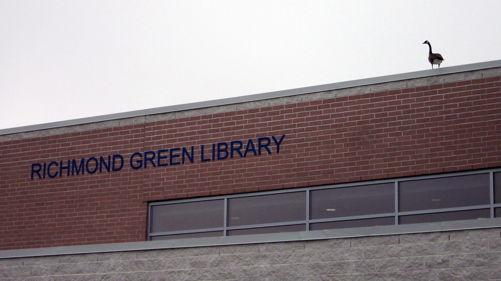 Richmond Green Library vs. The Goose