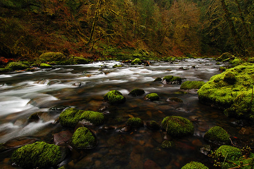 oregon pacificnorthwest creeks columbiarivergorge eaglecreek bushwhack fav10 platinumphoto aplusphoto longexposurewater