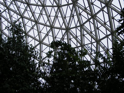 In the Tropical Dome