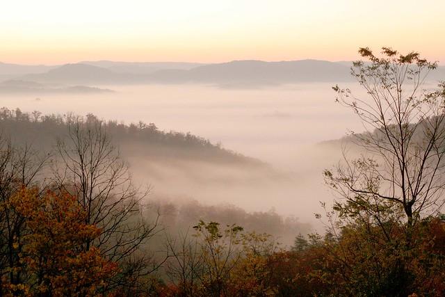 Dawn Tennessee