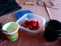 strawberries and yogurt for breakfast   DSC00577