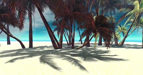 SL-Stock Image/Background-Tropical 49