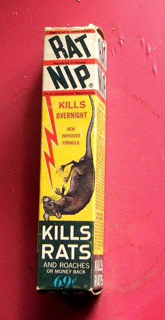 Rat Nip Rat Nip | Flickr - Pho...