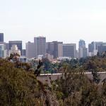 San Diego Zoo 080