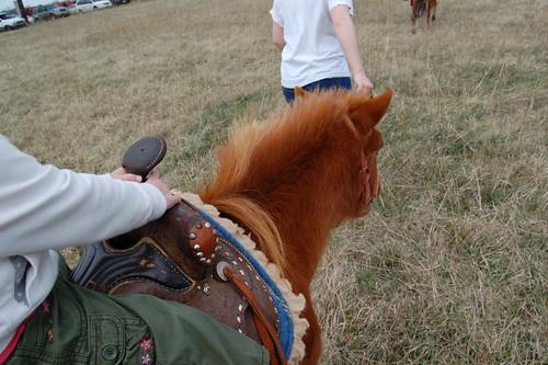 horse easter pony pistol