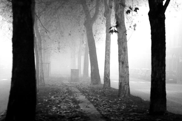 Notte di nebbia per le strade milanesi