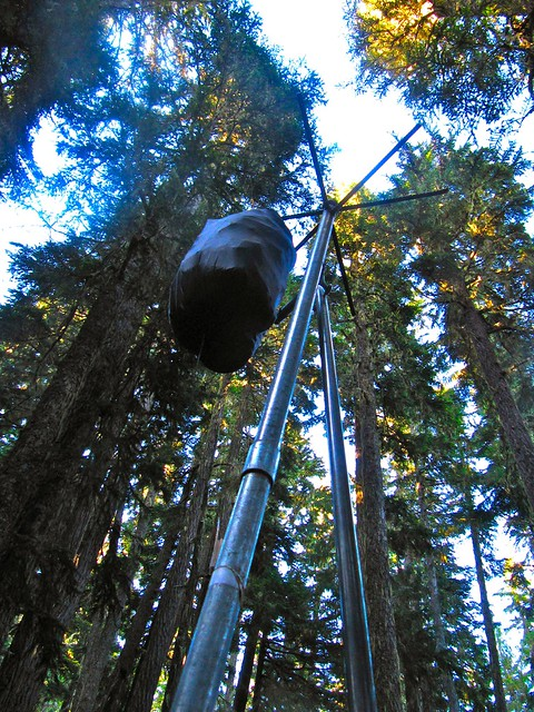 Food bag on Bear Pole