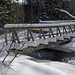 Skiers and Hikers Bridge on Northwest Passage Trail at Kolapore Uplands