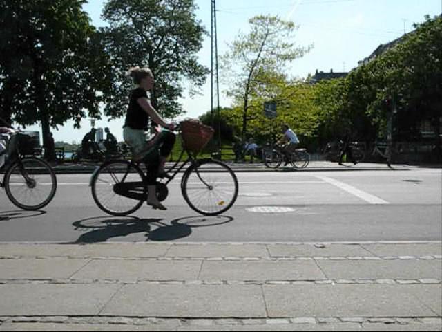 Copenhagen Bike Lane Concerto