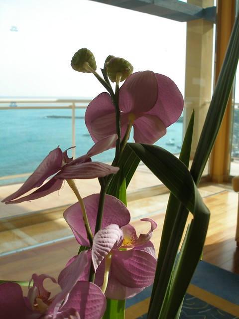 Benalmadena Hotels  Star