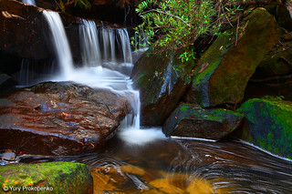 Small Waterfall in Ku-ring-gai Chase NP, Sydeny, Australia