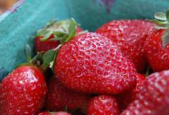 berry, strawberry, frutti di bosco, produce, fruit, food,
