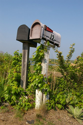 Mailboxes, Great Island, Narragansett, RI