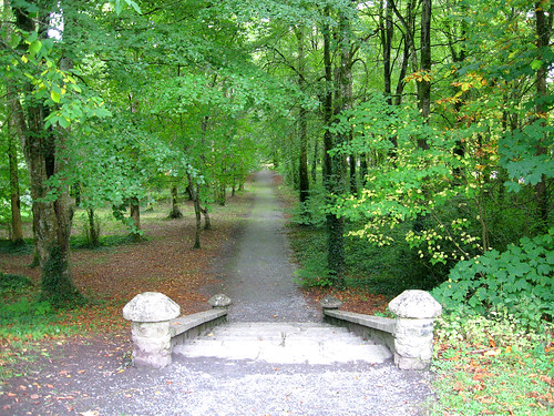 Pathway through Coole Park.