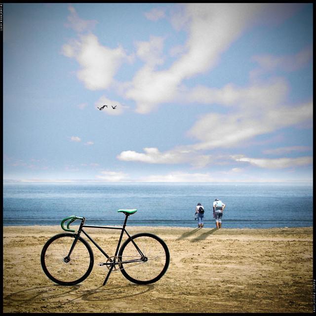 976cb715126 looking for the summer | Chris Monitz | Flickr