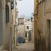 Small photo of Creamy Medina