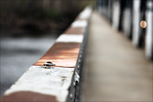 bridge canon eos is spring nb newbrunswick age timeline usm hampton dslr 2009 ef 24105mm 50d sjphoto nbphoto bmca
